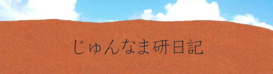 じゅんなま研日記